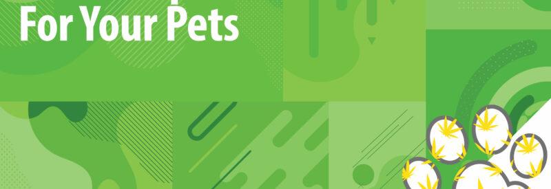 CBD Pet Treats Article Header