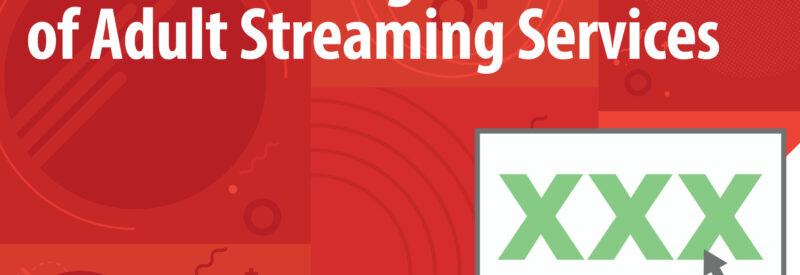 Adult streaming services graphic Article Header