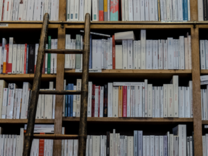 Adult bookstore shelf full of books