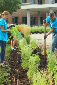 nonprofit volunteers planting trees