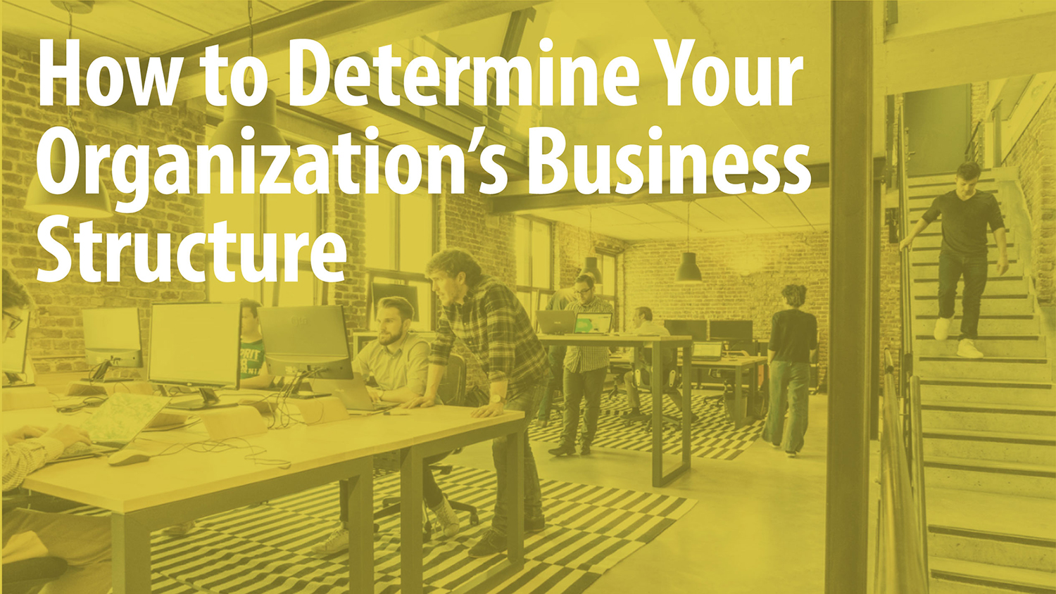 How to Determine Your Organization's Business Structure